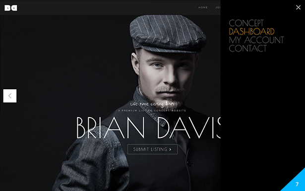 Brian – A Multi Business, Marketing Premium (paid) Listings, BBPress and Store Concept